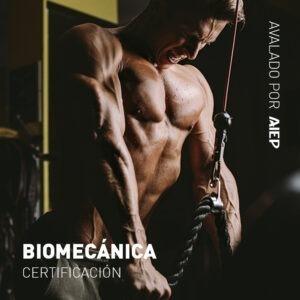 Curso De Biomecanica Online De Cristian Uema